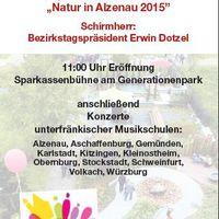 Informationsbroschüre Musikschulestival